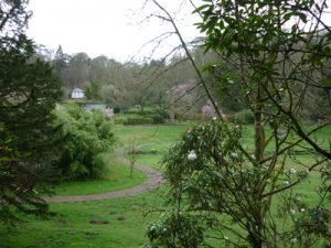 Colby Woodland Gardens pembrokeshire RS (2)